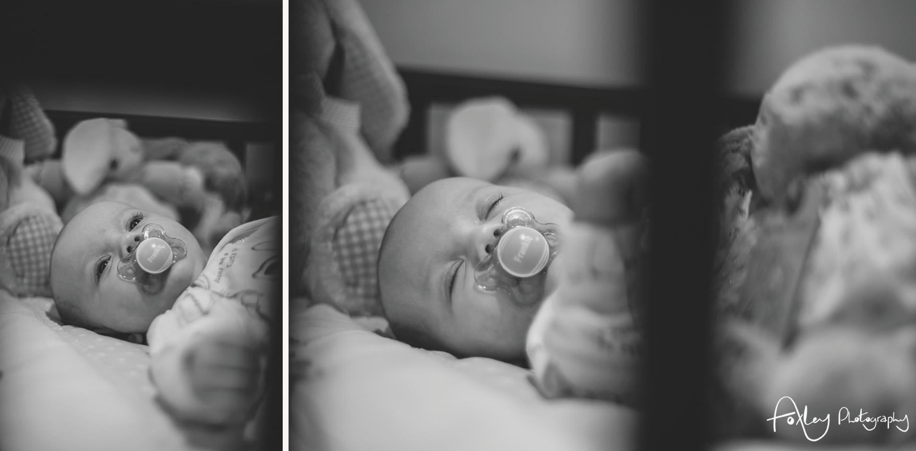 Baby-Frankie-036