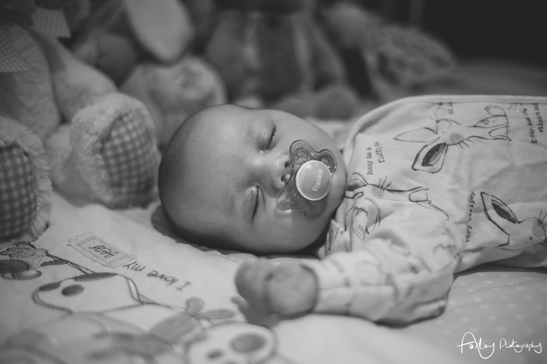 Baby-Frankie-037